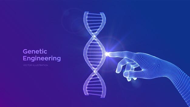 Mano che tocca la maglia della struttura delle molecole di sequenza del dna. modello modificabile di codice dna wireframe. ingegneria genetica.