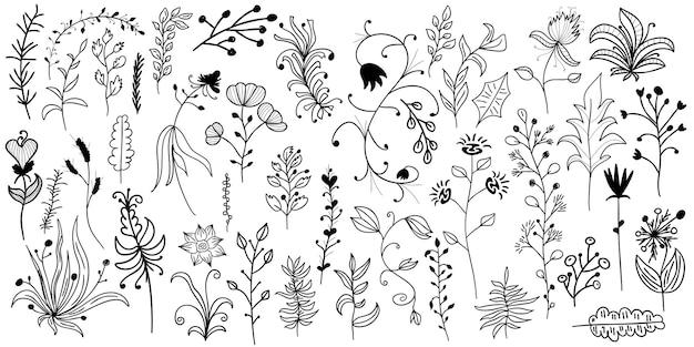Fiori disegnati a mano foglie isolate su sfondo biancolinee astratte fiori con foglie e riccioli