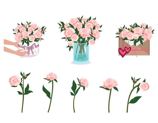 Le mani stanno tenendo le peonie bouquet