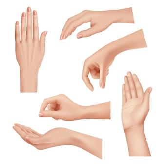 Gesti delle mani. femmina premurosa pelle palmo e dita unghie donna cosmetici mani realistiche closeup vettore. donna della mano della palma, illustrazione differente della posizione della ragazza delle dita