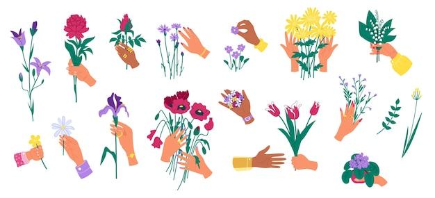 Mani che tengono i fiori isolati su bianco insieme di