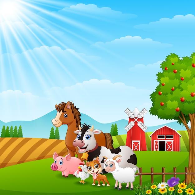 Animali felici alla priorità bassa dell'azienda agricola