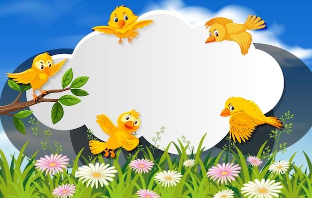 Uccello felice nell'insegna in bianco del fondo della natura
