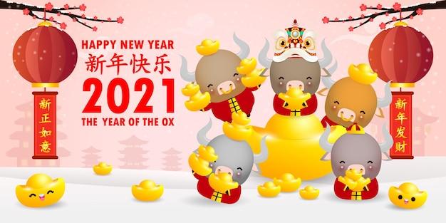 Felice anno nuovo cinese 2021, piccolo bue e leone che ballano con lingotti d'oro cinesi, l'anno dello zodiaco del bue, mucca carina calendario dei cartoni animati isolato, traduzione felice anno nuovo cinese