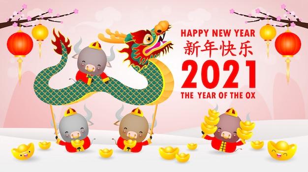Felice anno nuovo cinese 2021 del disegno del manifesto dello zodiaco di bue con petardo carino mucca e danza del drago. l'anno del bue vacanze biglietto di auguri isolato su sfondo, traduzione: felice anno nuovo.