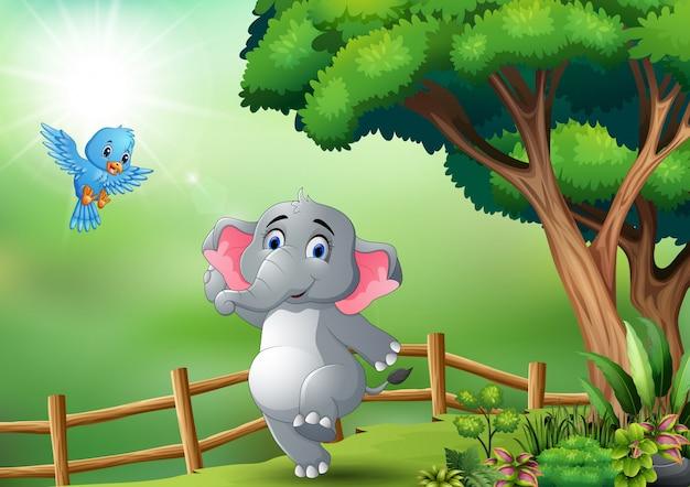 Elefante felice e uccello blu nella giungla