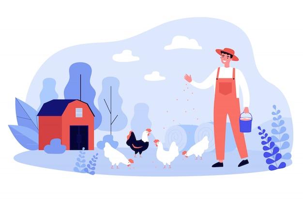 Felice allevamento di galline da riproduzione