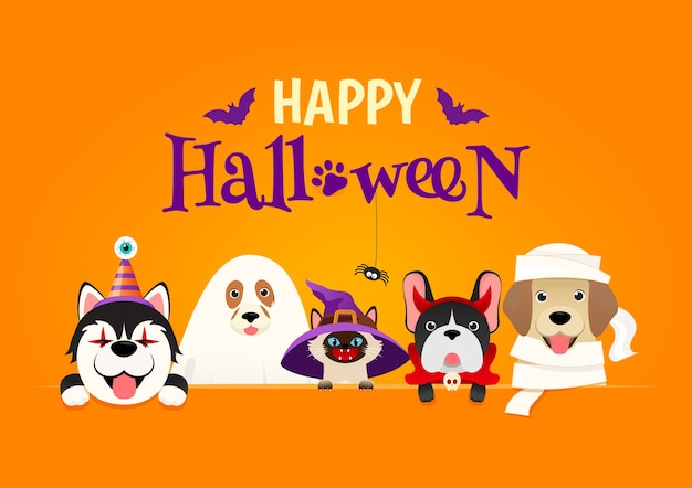 Costume da happy halloween pet.
