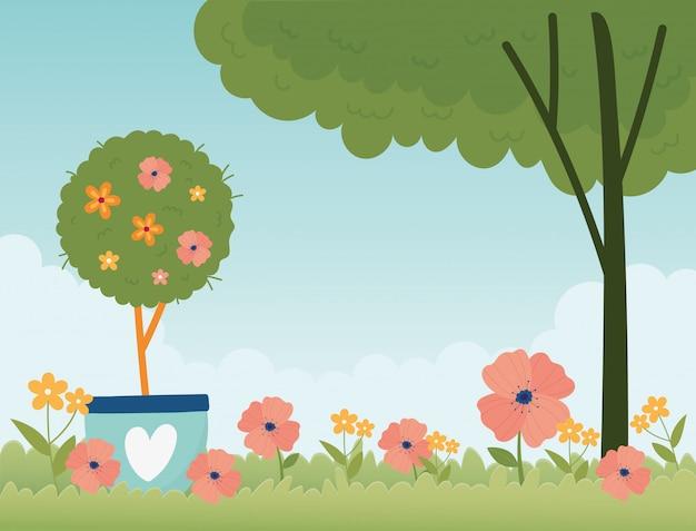 La pianta in vaso della molla felice fiorisce la natura floreale dell'erba dell'albero