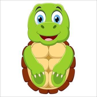Cartone animato tartaruga felice su sfondo bianco
