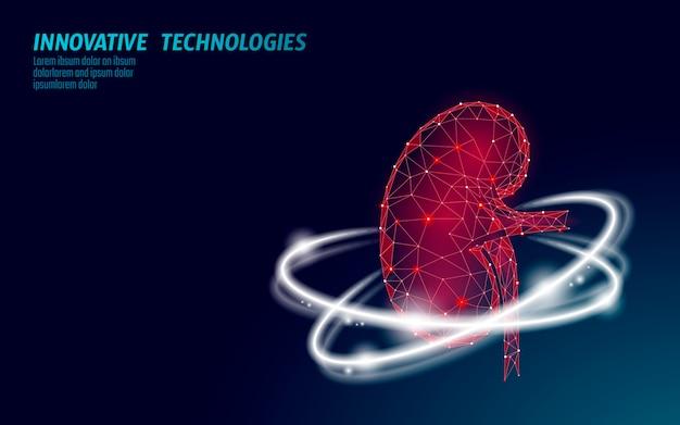 Modello geometrico low poly dell'organo interno del rene sano 3d. sistema di urologia
