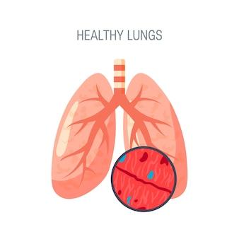 Concetto di polmoni sani isolato su bianco