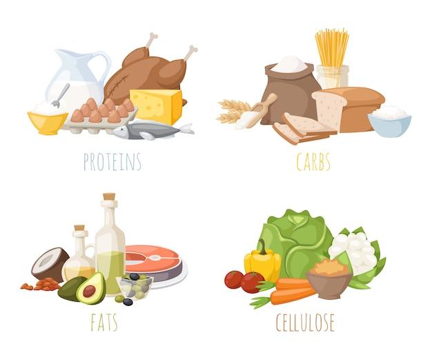 Nutrizione sana, carboidrati grassi proteine dieta equilibrata, cucina, concetto culinario e vettore di cibo.