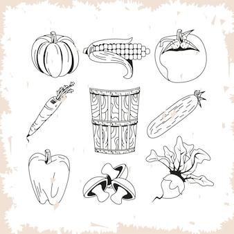 Collezione di icone di verdure sane e biologiche
