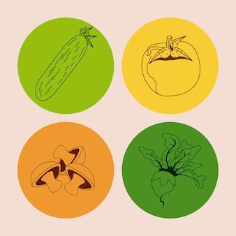 Gruppo di icone di verdure sane e biologiche