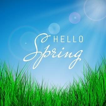 Ciao poster di primavera con erba verde e cielo blu