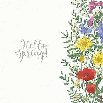 Cartolina d'auguri di primavera gialla decorata con fiori che sbocciano selvatici ed erbe fiorite di prato sul bordo destro e scritta hello spring
