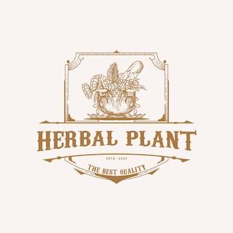 Logo di piante a base di erbe con stile vintage