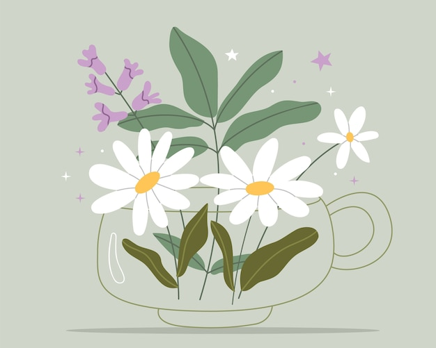 Tisana con camomilla e timo medicina di erbe naturali.