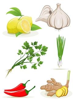 Erbe limone pepe aglio zenzero cipolline raccolta coriandolo su bianco