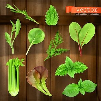 Set di erbe sulla tavola di legno