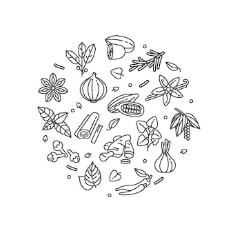 Composizione nelle erbe e nelle spezie isolata su bianco