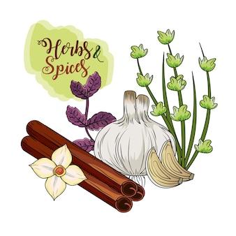 Erbe e spezie piante e cibo per organo