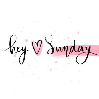 Hey love sunday. frase di lettering disegnato a mano di vettore. moderna calligrafia pennello