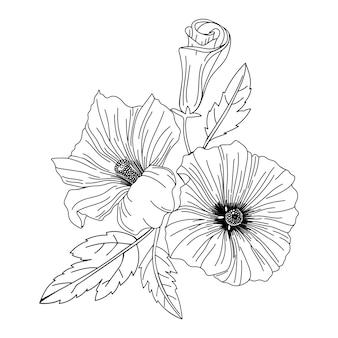 Illustrazione di fiori di ibisco