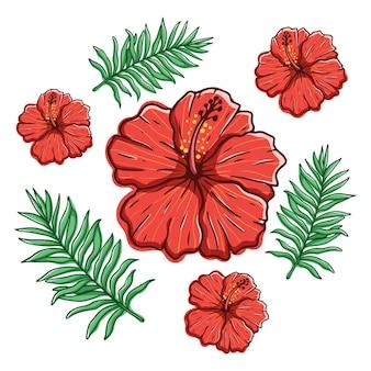Fiori e foglie di ibisco con stile di disegno a mano