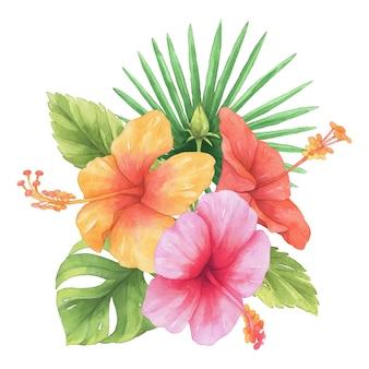 Acquerello di fiori di ibisco