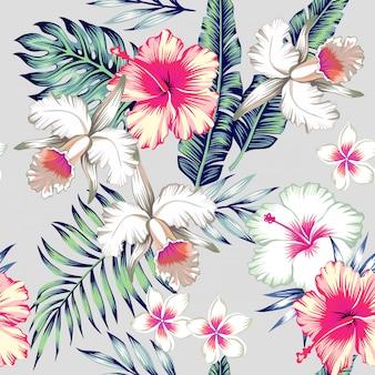 Modello senza cuciture tropicale di orchidee e ibisco Vettore Premium