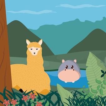 Ippopotami e lama nei cartoni animati di animali carini della foresta