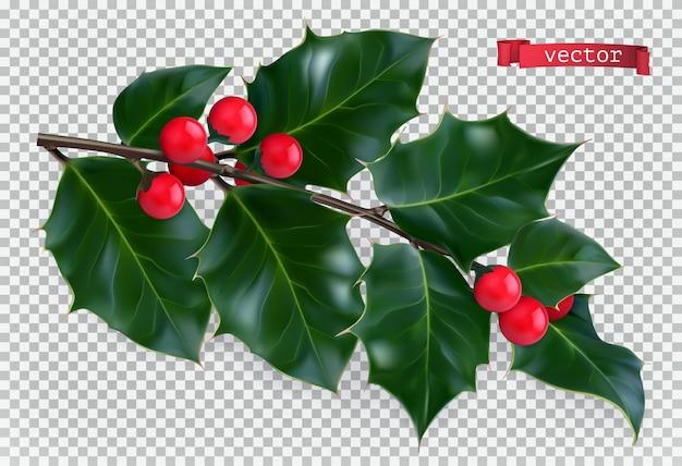 Holly tradizionale decorazione natalizia.