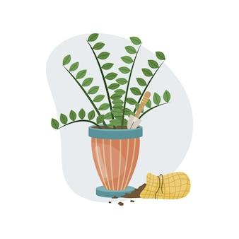 Una pianta domestica in un vaso, una pala e del terreno in un sacchetto. piantare. piante decorative all'interno della casa. stile piatto.