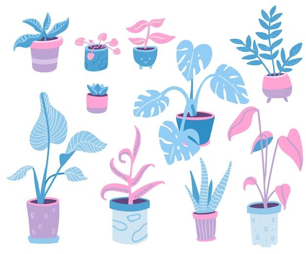 Collezione di piante domestiche illustrazioni scarabocchiate di piante in vaso da interno vasi e foglie diversi