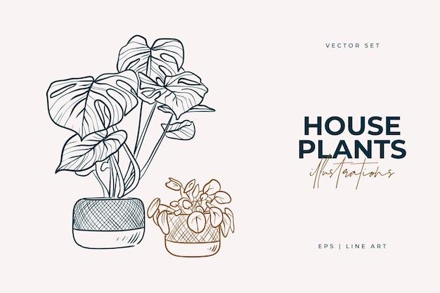 Piante domestiche isolate su uno sfondo bianco collezione di piante da interno in vaso decorazioni per la casa