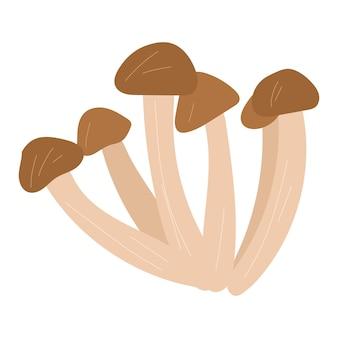 Illustrazione disegnata a mano del fumetto di vettore del fungo dell'agarico del miele isolato su priorità bassa bianca.
