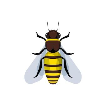 Ape del miele isolata su bianco. illustrazione vettoriale stile piatto