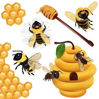 Il miele delle api vespe calabrone a nido d'ape alveare mestolo di miele con miele