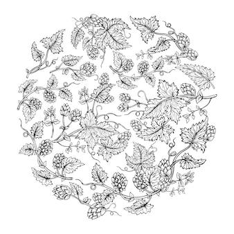Ramo di pianta di luppolo rotondo stile schizzo composizione corona. luppolo disegnato a mano con foglie e coni incisione disegnata a disegno di erbe angolari. schizzi decorativi per il design dell'imballaggio della birra, etichetta vettoriale modificabile
