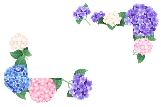 Ortensia colorata orizzontale modello banner design piatto illustrazione vettoriale su sfondo bianco.