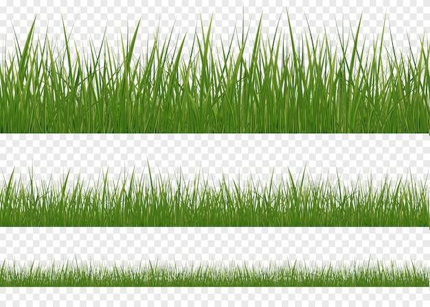 Prato verde orizzontale insieme isolato di erba