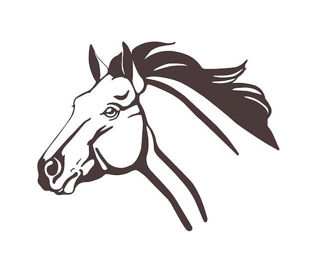 Testa di cavallo disegnata con linee di contorno isolate su bianco