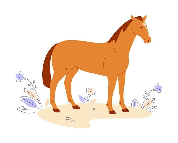 Cavallo nel prato. illustrazione vettoriale in stile cartone animato piatto. isolato su uno sfondo bianco.
