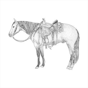 Cavallo con sella