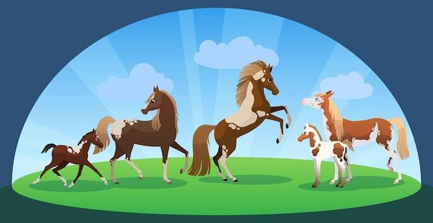 Cavalli e puledri. famiglia di simpatici animali con mamma e bambino. illustrazione vettoriale.
