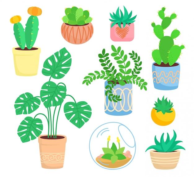 Pianta da interno di casa, set di vasi in ceramica, fiore piatto di cartone animato. piante grasse e piante da appartamento, collezione di cactus, monstera, aloe
