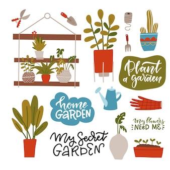 Piante d'appartamento in vasi diversi ripiano per piante in vaso verde e strumenti per la cura
