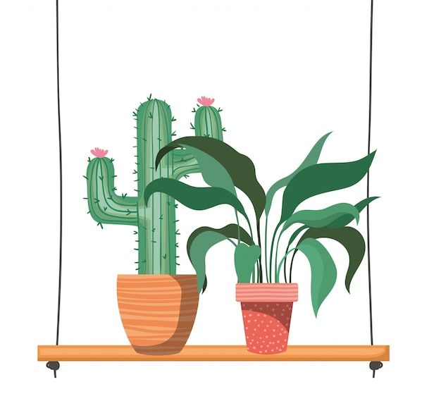 Piante d'appartamento con vaso su mensola
